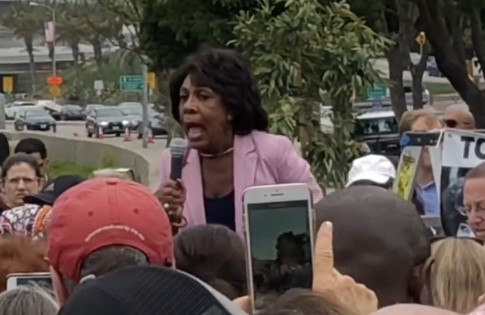 Waters Encourages Public Harassment of Trump Administration Officials: 'Create a Crowd … Tell Them They're Not Welcome'